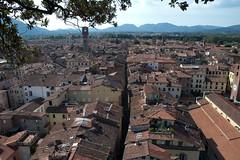 Blick vom Tower Guinigi