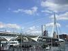 Rotterdam, Nieuwe Maas (Stewie1980) Tags: city bridge holland netherlands rotterdam erasmus nederland finepix fujifilm brug maas erasmusbrug nieuwe a700 fujifilmfinepixa700