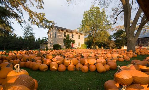 Yep, fall's here by thomevered