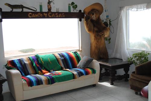 Camp4lo Cuatro Casa Bear
