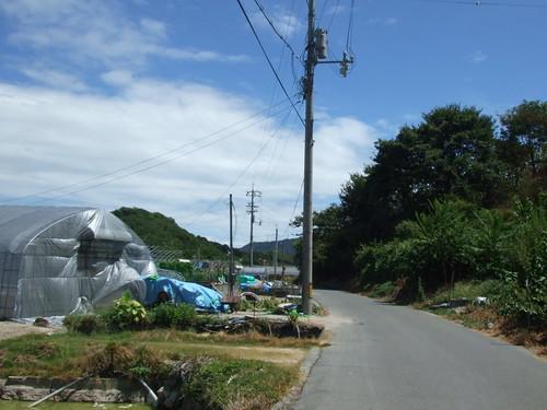 尾道 岩子島 画像 2