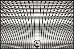 liège-guillemins (heavenuphere) Tags: roof bw clock lines station architecture modern train construction belgium railway symmetry calatrava 1022mm luik santiagocalatrava liège wallonia guillemins liègeguillemins