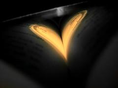 """Between Knowlegde & Luxuries, one needs Love to make it through"" (Renz.) Tags: lighting shadow blackandwhite bw book words heart spectrum cd selectivecoloring flickraward heartsaward fujifilmj10 pinkpgiment"