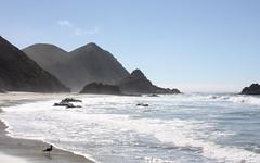 Pfeiffer Beach, Big Sur (Squiz100) Tags: california bigsur californiacoastline pfeifferbeach bigsurcoastline