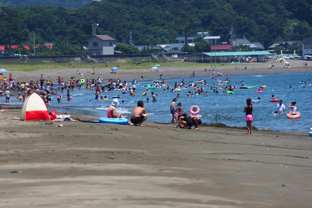 2010 Traveling Shikoku the Fourth day, Anan (2)
