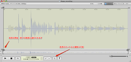 Skype_recording