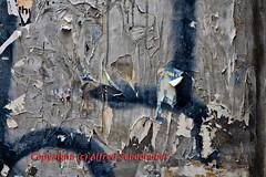 abgerissene Plakatwand / ragged billboard (Alfred Schauhuber) Tags: abstract texture wall poster bill colorful dismal grim background wand struktur structure billboard hoarding textures gaudy backgrounds bleak colored walls colourful dear desolate coloured demolished plakate plakat bunt placard desolation tattered bunter hintergrund abrupt parted bunte farbenfroh strukturen abstrakte wände plakatwand trostlos abstrak buntes conceptional abgerissen hintergründe advertisementboard abstraktes drabness plakatwände trostlosigkeit waende posterhoarding farbenfrohe disconsolation abstrakter farbenfrohes advertisementhoarding farbenfroher abgerissenes trostlose trostloser trostloses comfortloss deariness inconsolableness