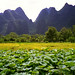 1996 #262-7A Guilin (Li River)