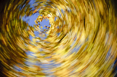 Twirl #284/365
