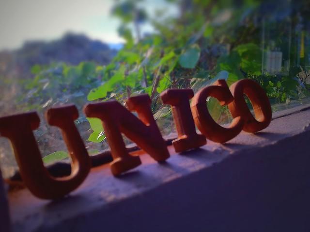U N I C O