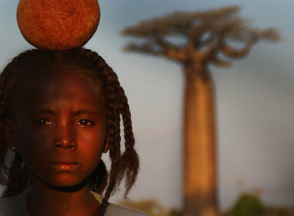 Child's face and baobab tree