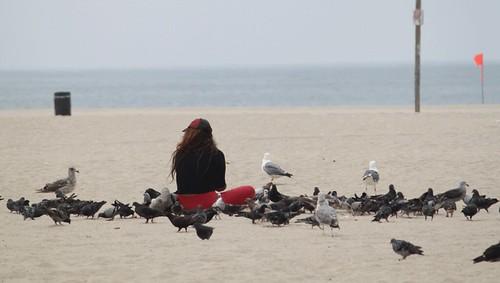 feed-the-birds-venice-beach-RPN