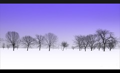 Barren (veryvinita) Tags: blue trees white snow chicago landscape grandmother minimal lakeshore barren bigmomma week85 thechallengefactory thepinnaclehof tphof kanchenjungachallengewinner tphofweek85