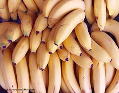 Banana, Guineo, Brazil (ssspnnn) Tags: musaacuminata musaparadisiaca musaceae banana guineo banano cambur brasil spnunes nunes spereiranunes canon70d