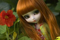 VIENTO (PULLIP DITA) (*Greenbottle*) Tags: viento pullipdita pullip doll dollphotography dollcollectors junplanning greeneyes greenbottle redhair bohogirl nasturtium