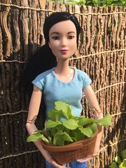 For Tonight's Salad (Foxy Belle) Tags: doll barbie asian made move handmade y shirt plant basket garden outside