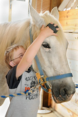 Andrew grooms Helen (Montgomery Area Nontraditional Equestrians (MANE)) Tags: al mane pikeroad