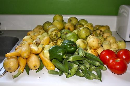 Farmer's Market Produce 9/3