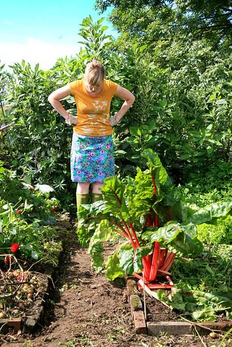 Boerinnenblog