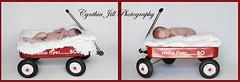 Little Red Wagon x's 2 (Cynthia Jill Photography) Tags: baby boys canon children wagon newjersey twins infant babies child nj fraternal radioflyer redwagon seamlesspaper