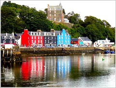 Tobermory - Isle of Mull- Scotland (jackfre2 (on a trip-voyage-reis-reise)) Tags: uk trees houses port reflections bay scotland highlands innerhebrides harbour hill ducks isleofmull mull tobermory colouredhouses fishingport argyllandbute mygearandmepremium