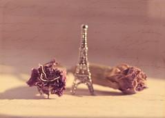 {Explore}Nous aurons toujours Paris