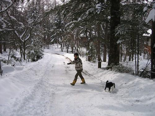 雪の別荘地内を散歩 2009.1.22 by Poran111