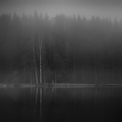 Keep Moving (Latyrx) Tags: morning trees light shadow mist lake reflection tree water fog suomi finland dark photography photo moving spring mood alone gloomy graphic forrest time good perspective smooth atmosphere figure lone keep always times gloom lonely mm finnish atmospheric kuopio 2010 vibe ambiance 70300 kallavesi nikkor70300mm nikond90 autumnvibe mikkolagerstedt