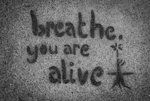 "graffiti: ""breathe, you are alive"""