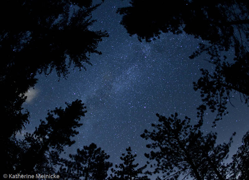 Night Sky at Idyllwild