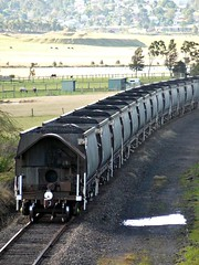 Chasing the Pelton 7 (sth475) Tags: railroad winter train wagon diesel rear railway loco australia nsw locomotive coal bog hopper freight pn taillight huntervalley smr pelton endoftrain sideswipe eot freightcar branchline southmaitlandrailway nswr nhtfclass nhtf36397x