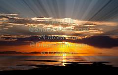 The colorful sunset at the Great Salt Lake (gary718) Tags: city morning light sunset sky orange sun lake reflection water sunrise dawn golden utah sand colorful ray bright horizon great salt dramatic peaceful beam trail lovely rise inspirational sunbeam tranquil sunray daybreak