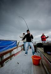 Mackerel for dinner! (Mr Bultitude) Tags: mackerel boat bucket fishing lough good bangor belfast craic brendanmcgreevy andyfeather