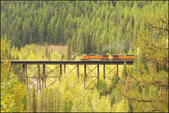 Mountain Men (Hogarth Ferguson) Tags: park railroad bridge trees burlington montana united engine september glacier national engines locomotive states fe northern bnsf locomotives sante moutnains
