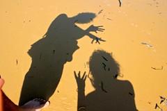 shadows 4