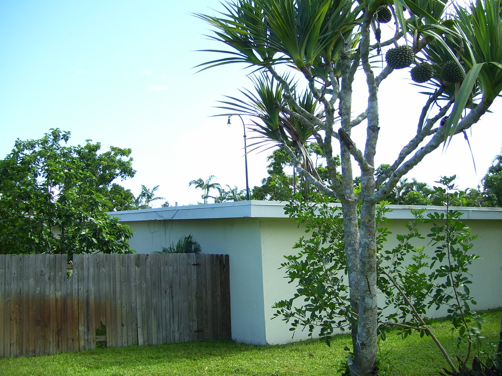 Plantation, Florida NSP - Exterior Before Photo 1