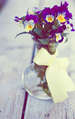 Goodbye Summer (Kim King) Tags: summer flower glass yellow happy purple pansy bow vase