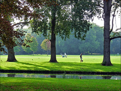 Summer has come to an end (Yolande...) Tags: park trees holland amsterdam bomen nederland beatrixpark