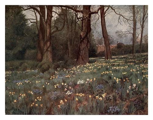 003-El jardin silvestre en primavera-Kew gardens 1908- Martin T. Mower