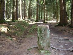 Grenzweg zwischen Saarland und Rheinland-Pfalz