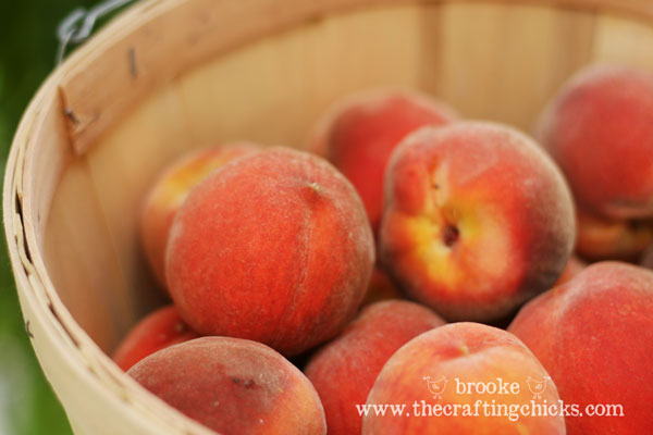 basket-of-fresh-peaches