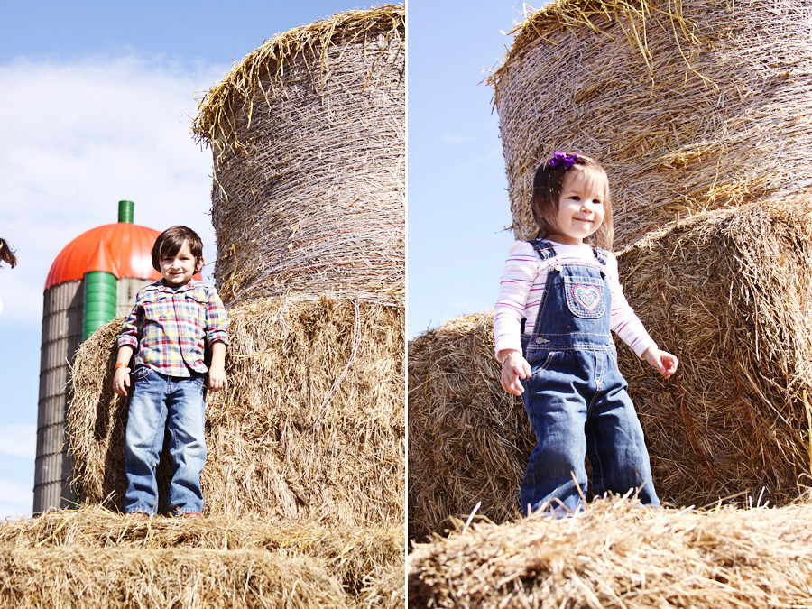 Rader farm 2010 (61))blog