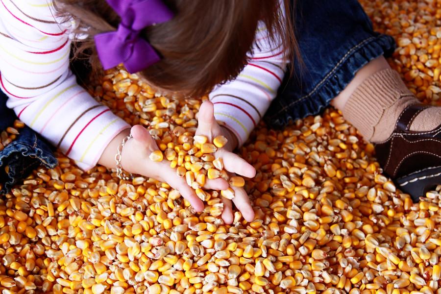 Rader farm 2010 (36))blog