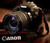 Canon T2i with a Canon EF-S 17-55mm f/2.8 IS USM (mjkjr) Tags: canon lens dslr newnan 1755mm 550d efs1755mmf28isusm newnanga t2i clubsi mermaidman mjkjr httpwwwflickrcomphotosmjkjr september272010