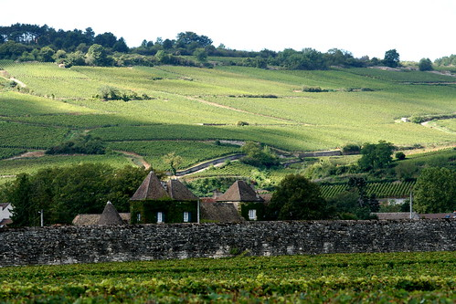 Côte de Beaune, Burgundy