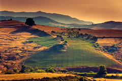 Travel East I (Marc Benslahdine) Tags: light sunset montagne landscape soleil kabylie lumire altitude explorer frog explore lumiere paysage brouillard algrie coucherdesoleil montagnes lightroom surlaroute explored lumiredusoir canonef70200mmf4lusm canoneos50d marcopix azazga tripax marcbenslahdine agoussim grandkabylie bruhme wwwmarcopixcom wwwfacebookcommarcopix marcopixcom