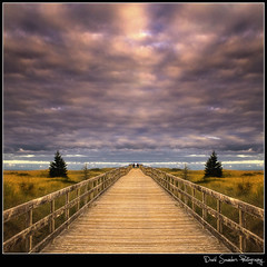 Leaving the Beach (Dave the Haligonian) Tags: ocean sunset summer sky cloud canada green beach water grass canon vanishingpoint wooden novascotia path atlantic trail adobe walkway 7d railing halifax dartmouth notreally hdr cowbay rainbowhaven cs5 copyrightallrightsreserved davidsaunders vertorama leavingthebeach davethehaligonian img2686f