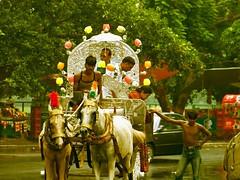 (riametric) Tags: calcutta chariot