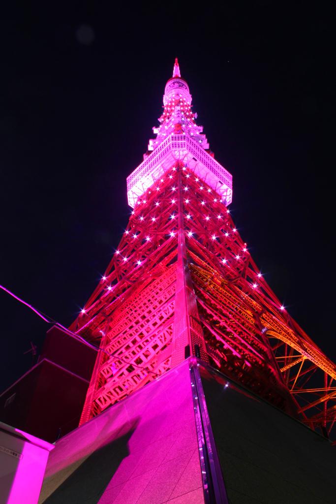 Pink Tokyo Tower 2010