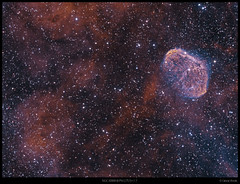 NGC6888 & bubble in synthetic green (Ginge70) Tags: astrophoto supernovaremnant Astrometrydotnet:status=solved Astrometrydotnet:version=14400 Astrometrydotnet:id=alpha20101032929882